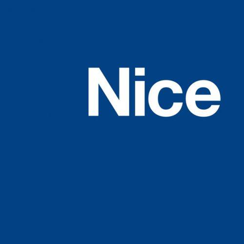 nice-logo-timeline